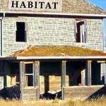 Creatues of Habitat Cover_Alice Osborn